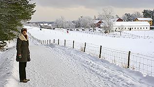 Hustegaholm och Gråviken – Naturskyddsföreningen i Lidingö
